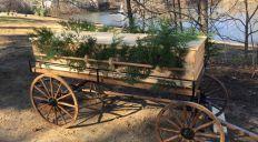 pine-state-coffins-jpeg-653x0_q80_crop-smart